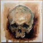 skull_study_by_jeffstahl-d568kfy